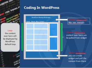 custom WordPress content image
