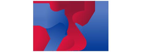 IT Service Nepal Logo